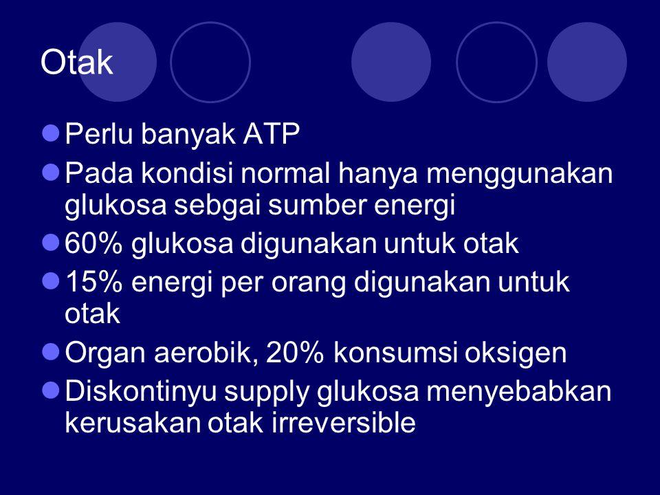 Otak Perlu banyak ATP Pada kondisi normal hanya menggunakan glukosa sebgai sumber energi 60% glukosa digunakan untuk otak 15% energi per orang digunak