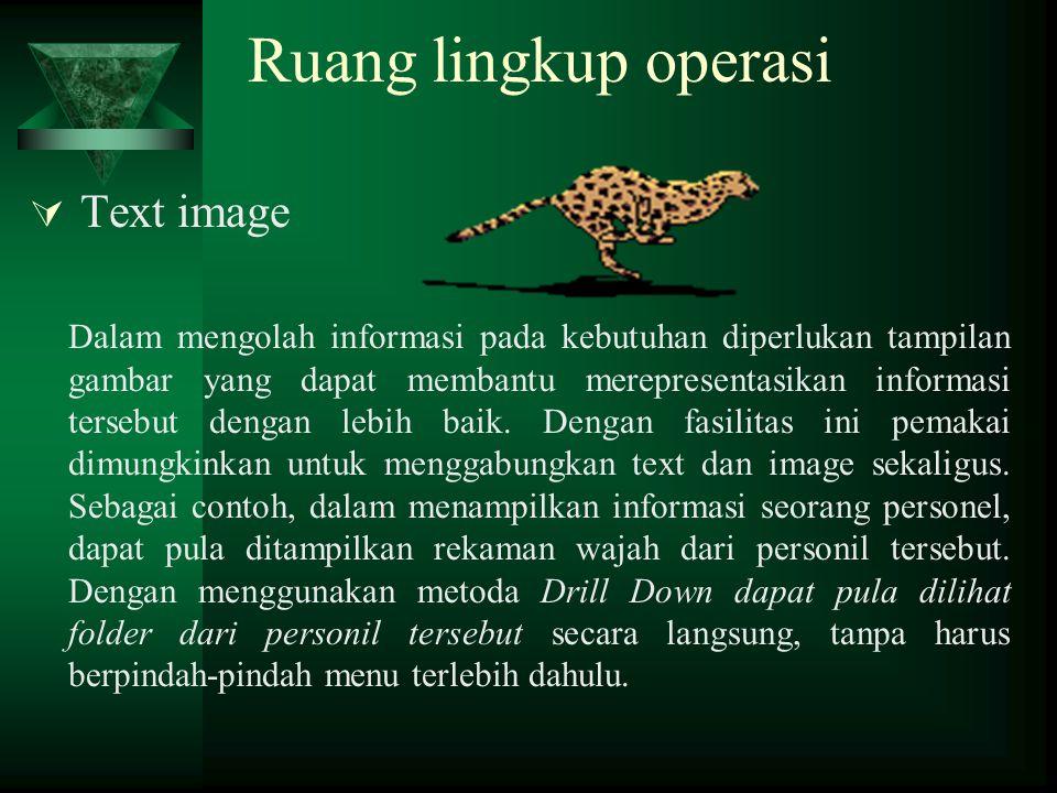 Ruang lingkup operasi  Text image Dalam mengolah informasi pada kebutuhan diperlukan tampilan gambar yang dapat membantu merepresentasikan informasi
