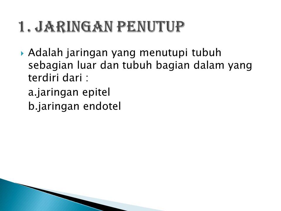 1. Jaringan penutup a. jaringan epitel b. jaringan endotel 2.Jaringan penunjang a.