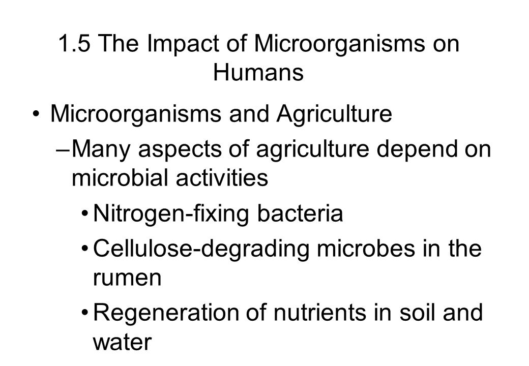 1.5 The Impact of Microorganisms on Humans Microorganisms and Agriculture –Many aspects of agriculture depend on microbial activities Nitrogen-fixing bacteria Cellulose-degrading microbes in the rumen Regeneration of nutrients in soil and water