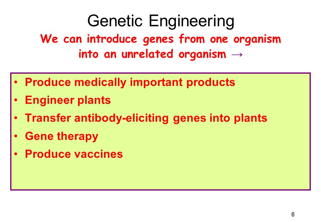 6 Genetic Engineering Produce medically important products Engineer plants Transfer antibody-eliciting genes into plants Gene therapy Produce vaccines We can introduce genes from one organism into an unrelated organism →