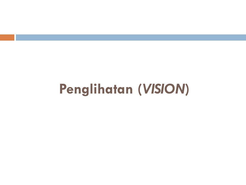 Proses/Sistem Visual  Sudut visual menentukan ketajaman sinyal yang masuk ke dalam mata shg akan mempengaruhi otak dari apa yg dilihat.