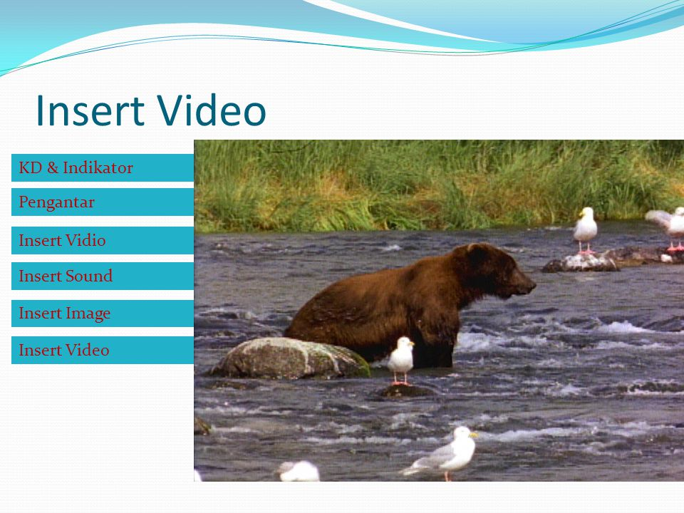 Insert Video KD & Indikator Pengantar Insert Vidio Insert Sound Insert Image Insert Video