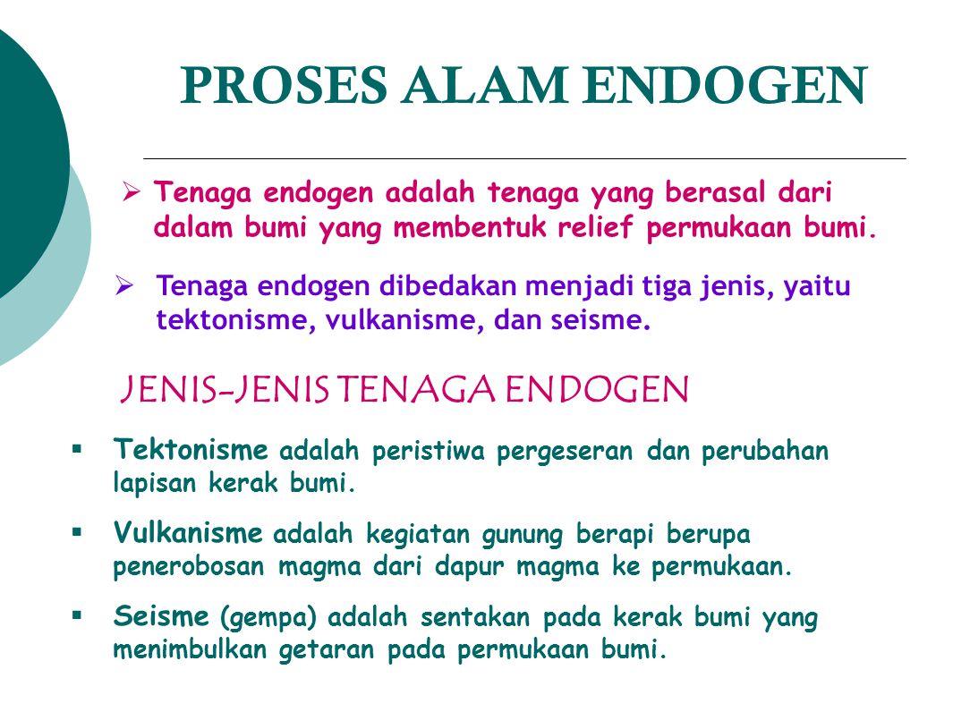 PROSES ALAM ENDOGEN TTenaga endogen adalah tenaga yang berasal dari dalam bumi yang membentuk relief permukaan bumi. TTenaga endogen dibedakan men