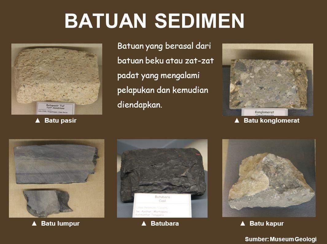 BATUAN SEDIMEN Batuan yang berasal dari batuan beku atau zat-zat padat yang mengalami pelapukan dan kemudian diendapkan. ▲ Batu pasir atu konglomerat