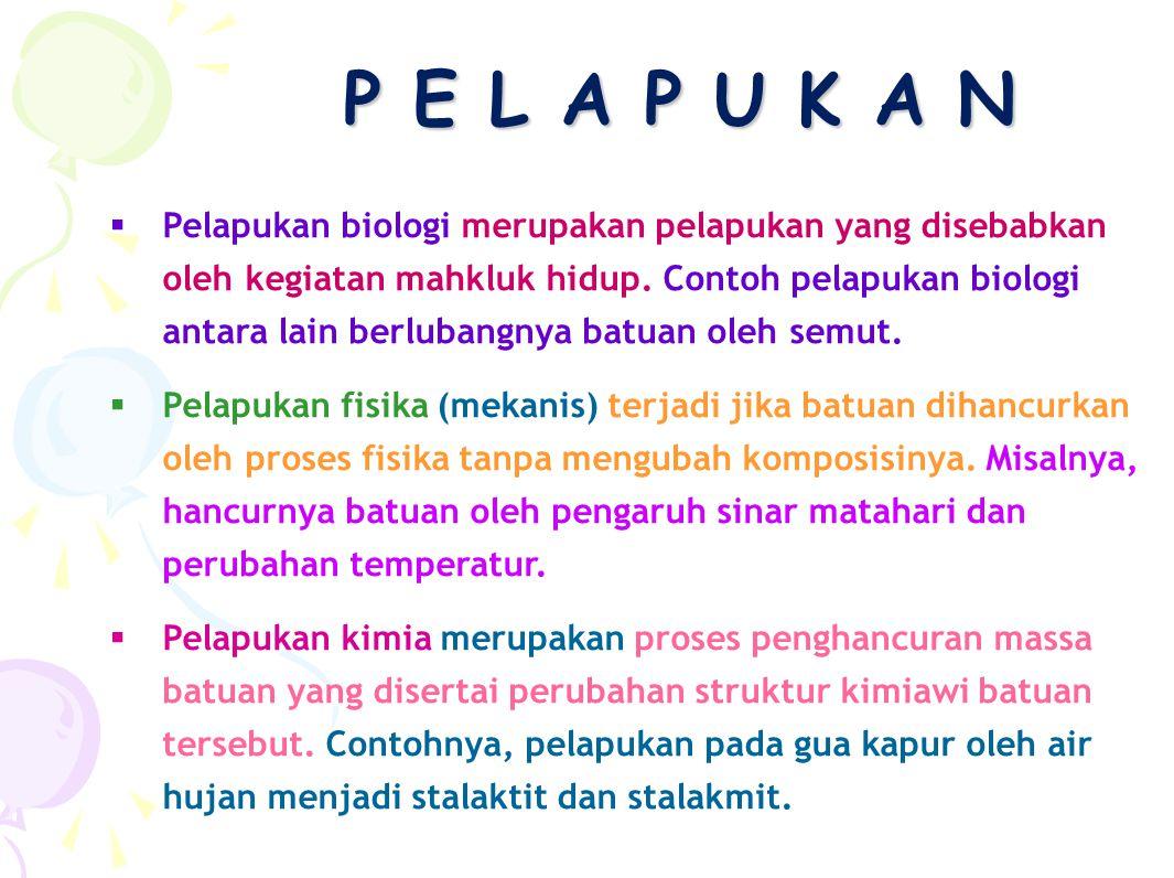 P E L A P U K A N PPelapukan biologi merupakan pelapukan yang disebabkan oleh kegiatan mahkluk hidup. Contoh pelapukan biologi antara lain berlubang