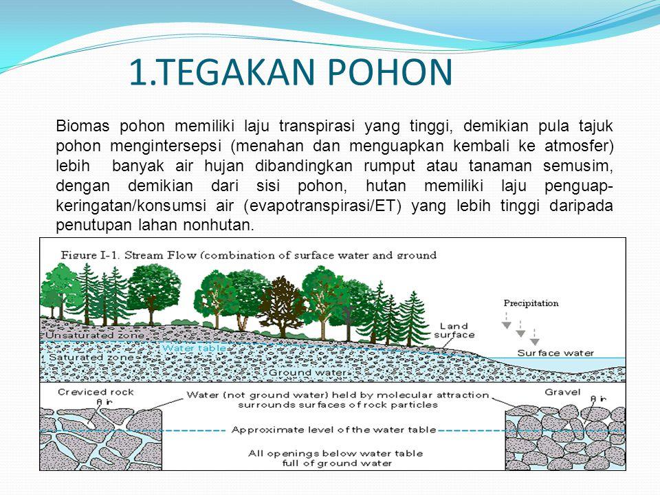1.TEGAKAN POHON Biomas pohon memiliki laju transpirasi yang tinggi, demikian pula tajuk pohon mengintersepsi (menahan dan menguapkan kembali ke atmosf
