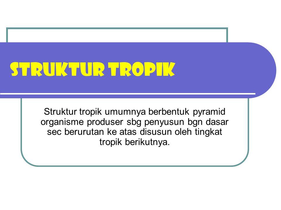 STRUKTUR TROPIK Struktur tropik umumnya berbentuk pyramid organisme produser sbg penyusun bgn dasar sec berurutan ke atas disusun oleh tingkat tropik