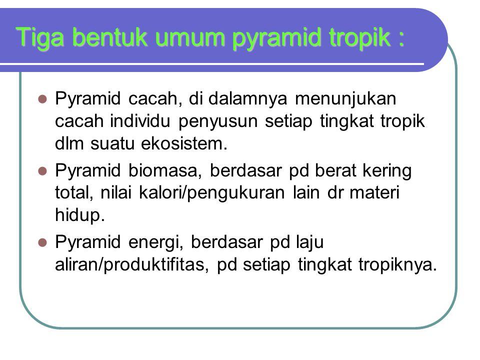 Tiga bentuk umum pyramid tropik : Pyramid cacah, di dalamnya menunjukan cacah individu penyusun setiap tingkat tropik dlm suatu ekosistem. Pyramid bio