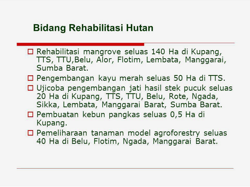  Rehabilitasi mangrove seluas 140 Ha di Kupang, TTS, TTU,Belu, Alor, Flotim, Lembata, Manggarai, Sumba Barat.  Pengembangan kayu merah seluas 50 Ha