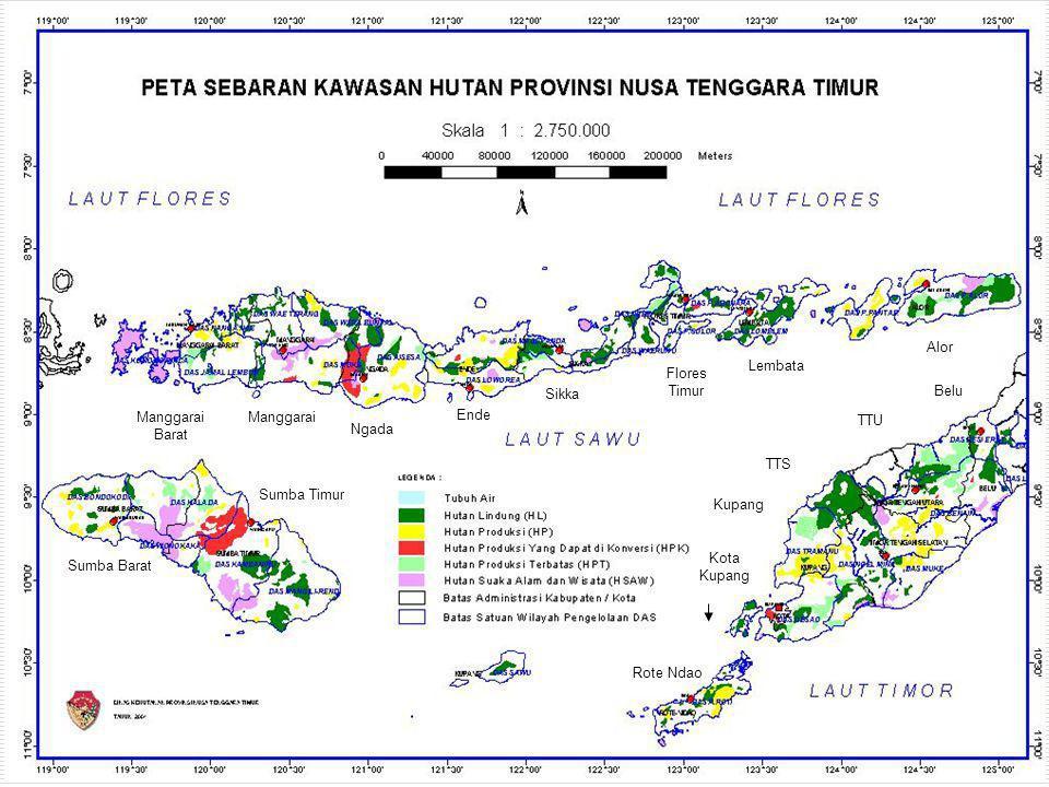  Pemeliharaan batas kawasan hutan sepanjang 140 Km di Manggarai, Alor, Sumba Timur, Sumba Barat.