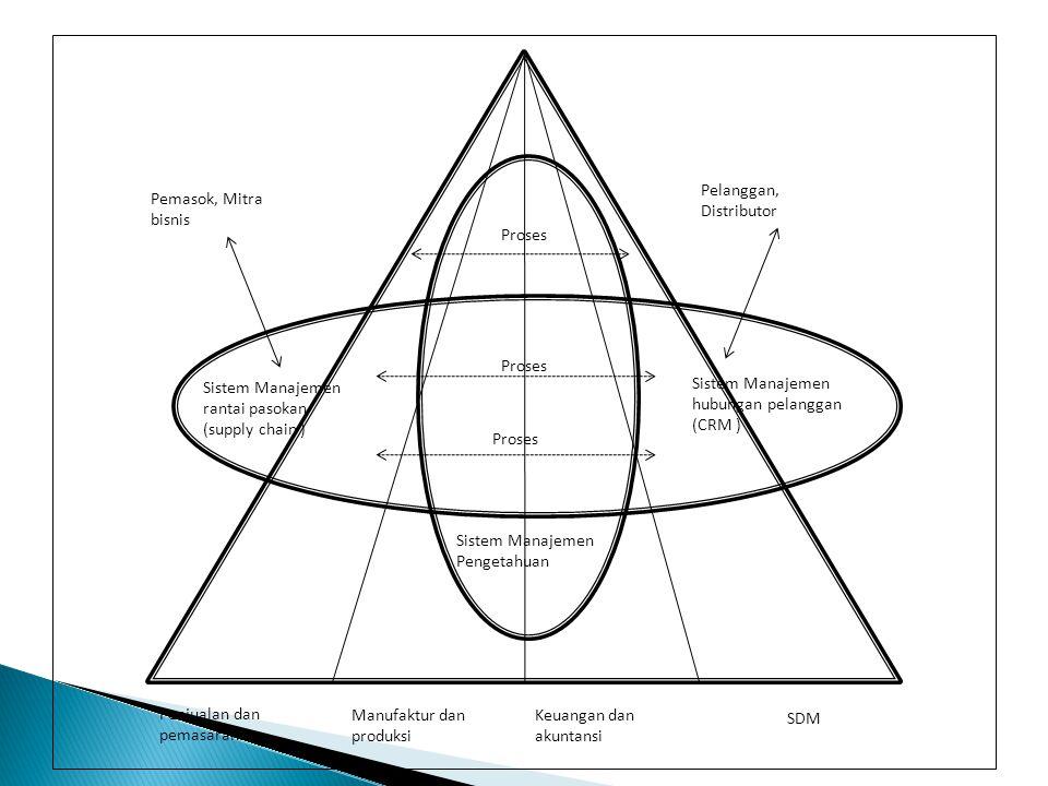 Penjualan dan pemasaran Manufaktur dan produksi Keuangan dan akuntansi SDM Proses Sistem Manajemen rantai pasokan (supply chain ) Sistem Manajemen hub