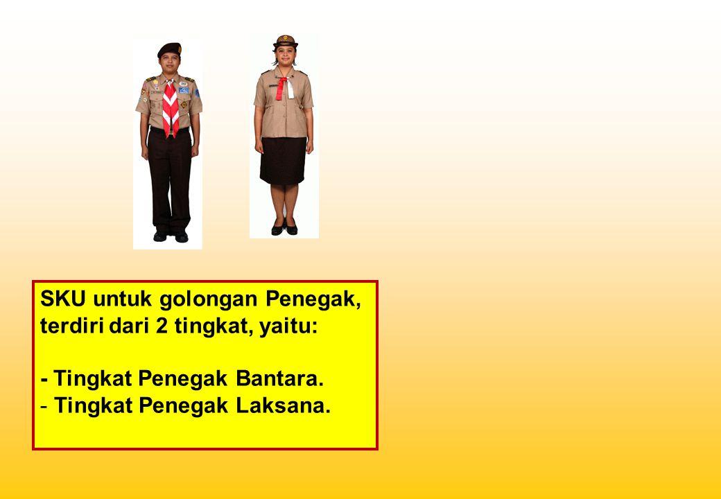 SKU untuk golongan Penegak, terdiri dari 2 tingkat, yaitu: - Tingkat Penegak Bantara. - Tingkat Penegak Laksana.