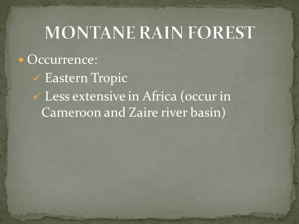Occurrence: Eastern Tropic Less extensive in Africa (occur in Cameroon and Zaire river basin)