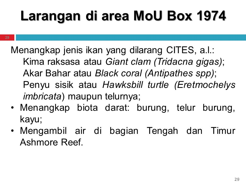 Larangan di area MoU Box 1974 29 Menangkap jenis ikan yang dilarang CITES, a.l.: Kima raksasa atau Giant clam (Tridacna gigas); Akar Bahar atau Black
