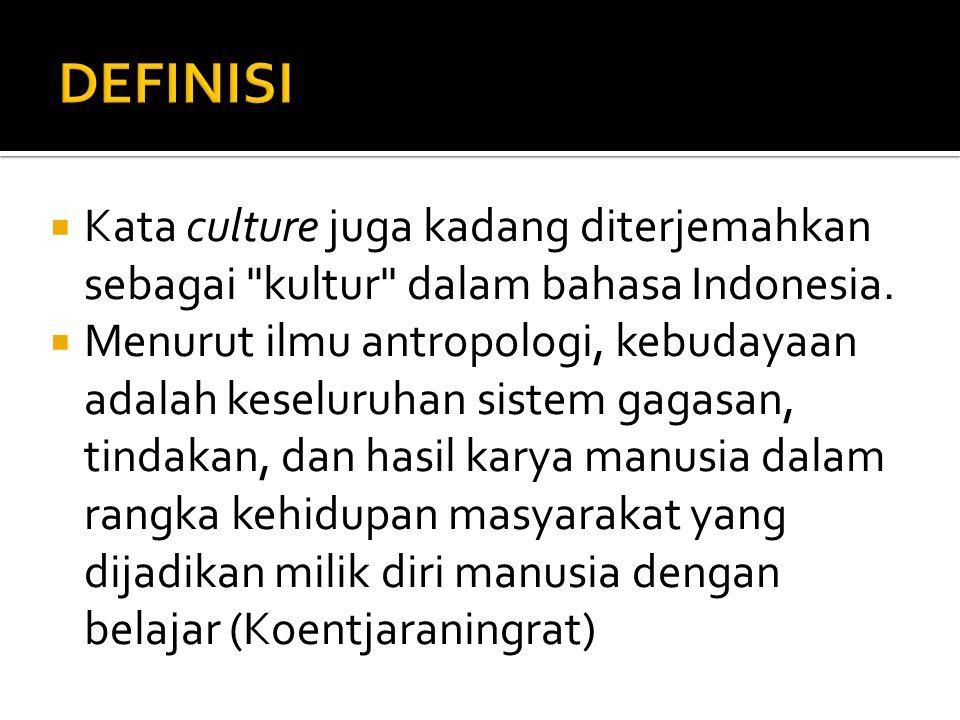 Stereotype Kebudayaan PositifNegatif Lebih Dominan Gambaran subyektif mengenai kebudayaan suku bangsa tertentu dan biasanya dijadikan sebagai ciri khas yang melekat