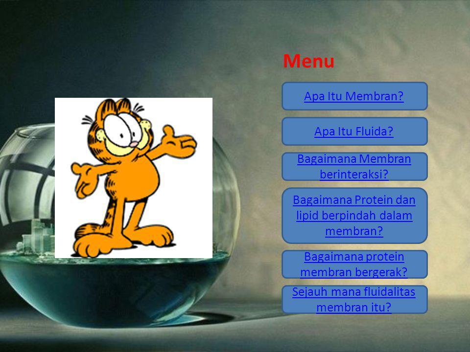 Menu Apa Itu Membran? Apa Itu Fluida? Bagaimana Membran berinteraksi? Bagaimana Protein dan lipid berpindah dalam membran? Bagaimana protein membran b