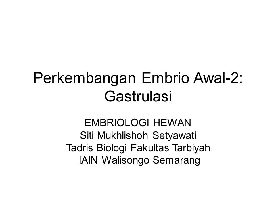 Perkembangan Embrio Awal-2: Gastrulasi EMBRIOLOGI HEWAN Siti Mukhlishoh Setyawati Tadris Biologi Fakultas Tarbiyah IAIN Walisongo Semarang