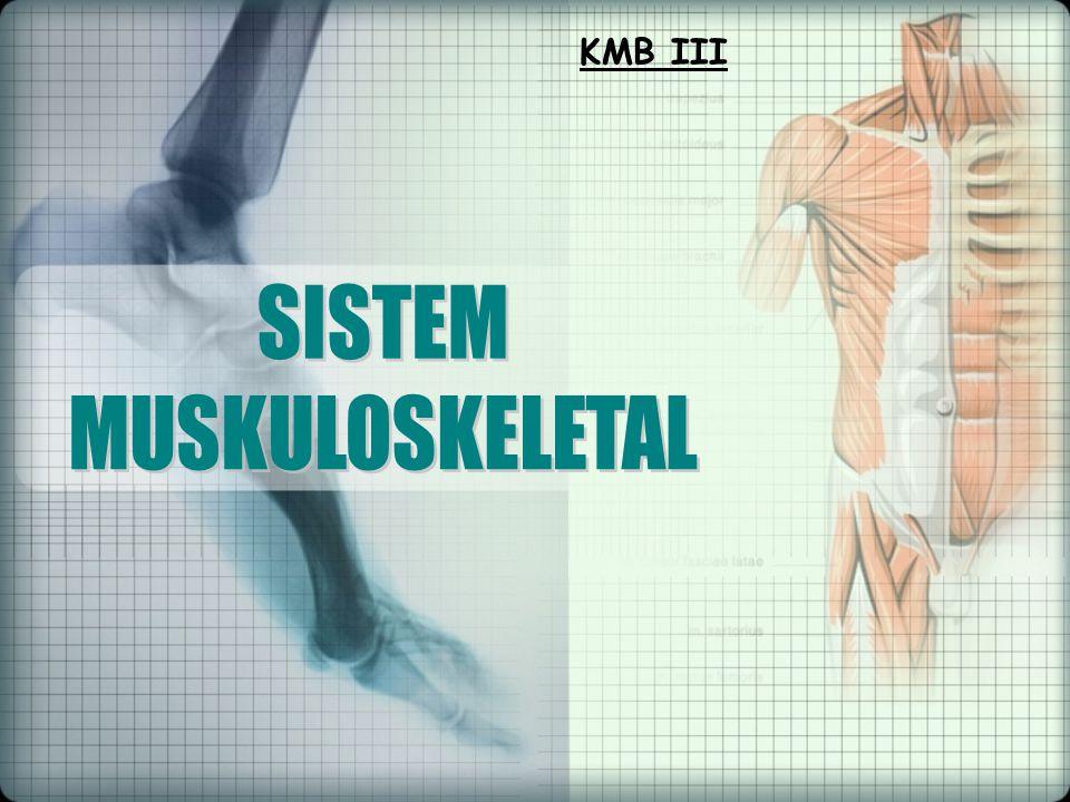 KMB III