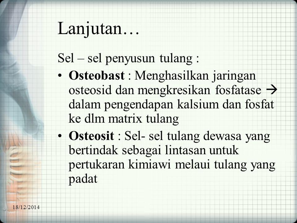 Lanjutan… Sel – sel penyusun tulang : Osteobast : Menghasilkan jaringan osteosid dan mengkresikan fosfatase  dalam pengendapan kalsium dan fosfat ke