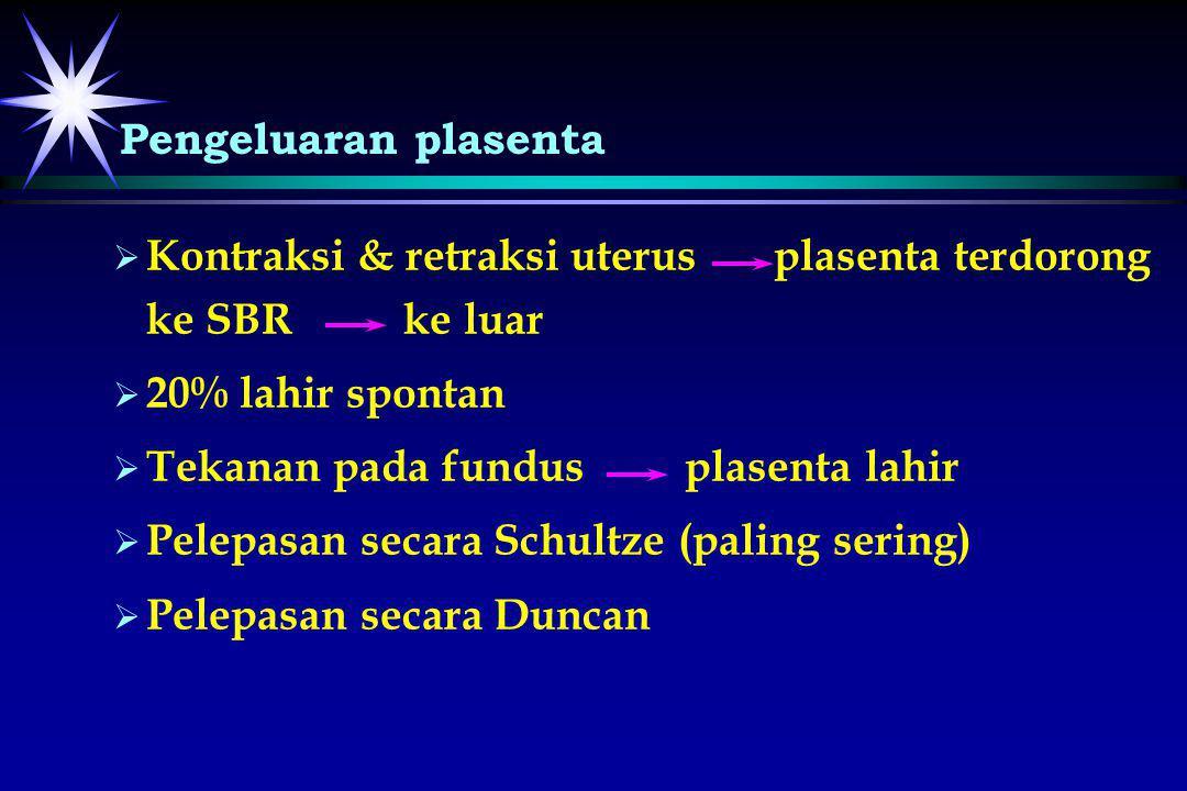  Kontraksi & retraksi uterus plasenta terdorong ke SBR ke luar   20% lahir spontan   Tekanan pada fundus plasenta lahir   Pelepasan secara Sc