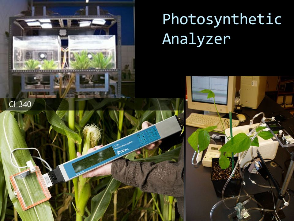 Light Meter Jangka sorong Thermo- Higrometer Analitic balance Oven