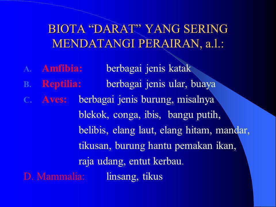 BIOTA DARAT YANG SERING MENDATANGI PERAIRAN, a.l.: A.