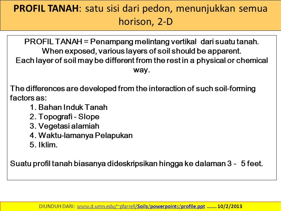 PROFIL TANAH: satu sisi dari pedon, menunjukkan semua horison, 2-D DIUNDUH DARI: www.d.umn.edu/~pfarrell/Soils/powerpoints/profile.ppt ……. 10/2/2013ww