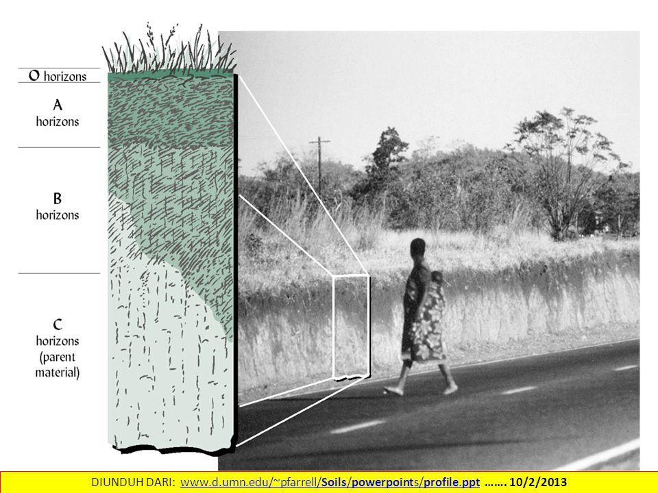 DIUNDUH DARI: www.d.umn.edu/~pfarrell/Soils/powerpoints/profile.ppt ……. 10/2/2013www.d.umn.edu/~pfarrell/Soils/powerpoints/profile.ppt