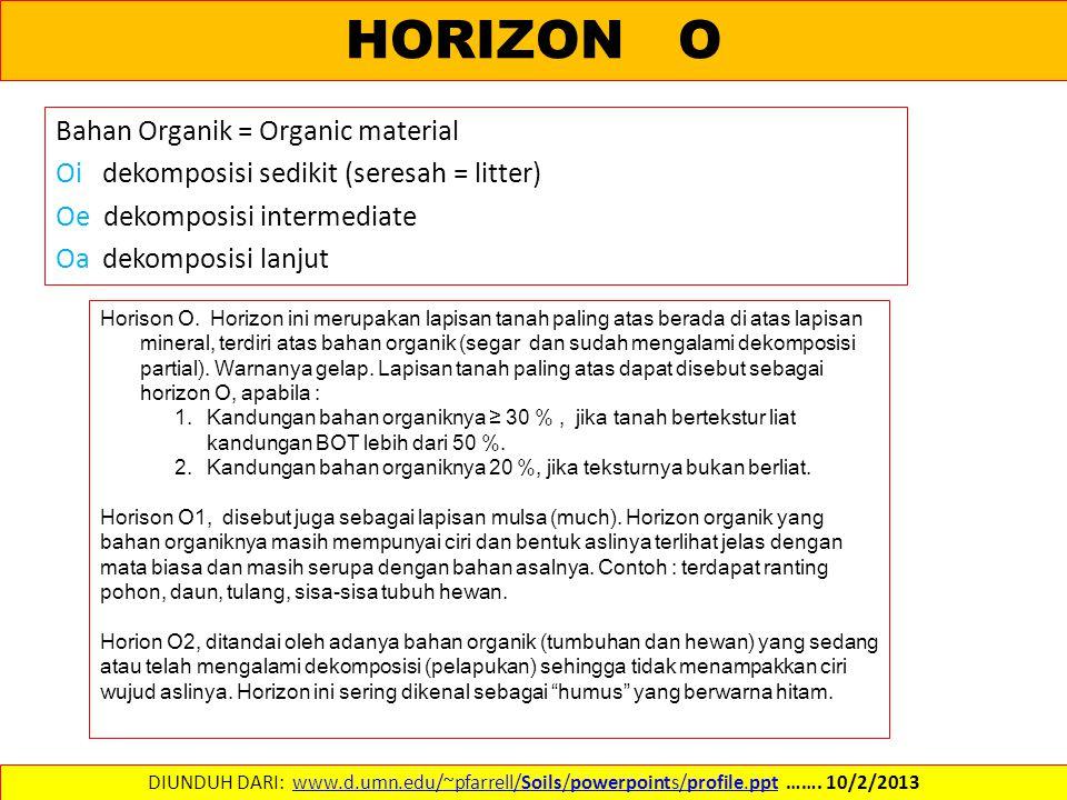 HORIZON O Bahan Organik = Organic material Oi dekomposisi sedikit (seresah = litter) Oe dekomposisi intermediate Oa dekomposisi lanjut DIUNDUH DARI: www.d.umn.edu/~pfarrell/Soils/powerpoints/profile.ppt …….