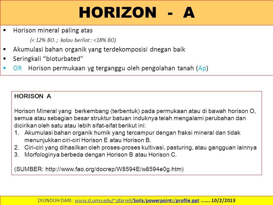 HORIZON - A  Horison mineral paling atas (< 12% BO. ; kalau berliat : <18% BO)  Akumulasi bahan organik yang terdekomposisi dnegan baik  Seringkali