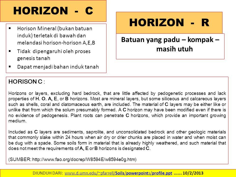  Horison Mineral (bukan batuan induk) terletak di bawah dan melandasi horison-horison A,E,B  Tidak dipengaruhi oleh proses genesis tanah  Dapat menjadi bahan induk tanah DIUNDUH DARI: www.d.umn.edu/~pfarrell/Soils/powerpoints/profile.ppt …….