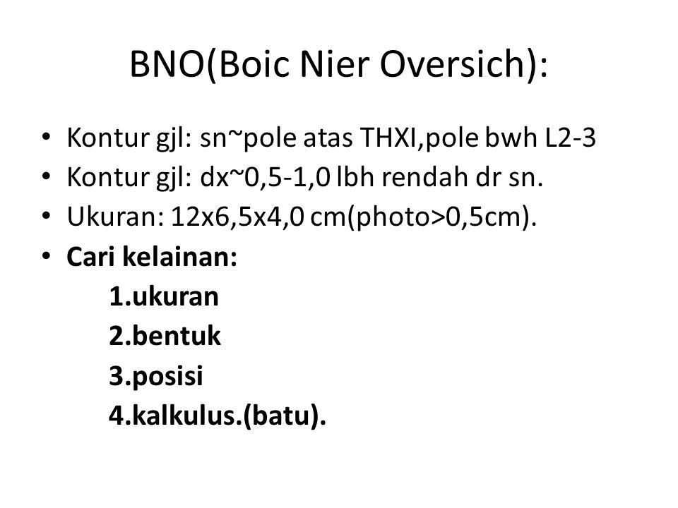 BNO(Boic Nier Oversich): Kontur gjl: sn~pole atas THXI,pole bwh L2-3 Kontur gjl: dx~0,5-1,0 lbh rendah dr sn.
