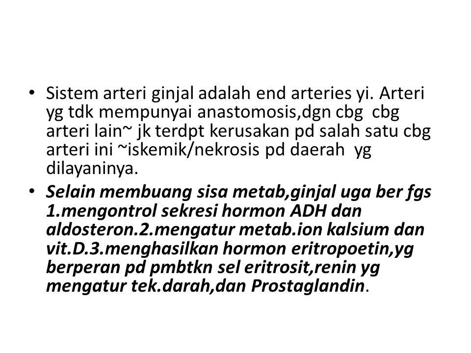 Sistem arteri ginjal adalah end arteries yi.