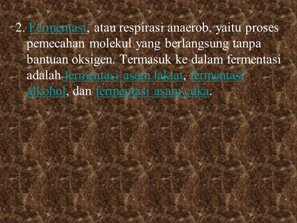 2. Fermentasi, atau respirasi anaerob, yaitu proses pemecahan molekul yang berlangsung tanpa bantuan oksigen. Termasuk ke dalam fermentasi adalah ferm
