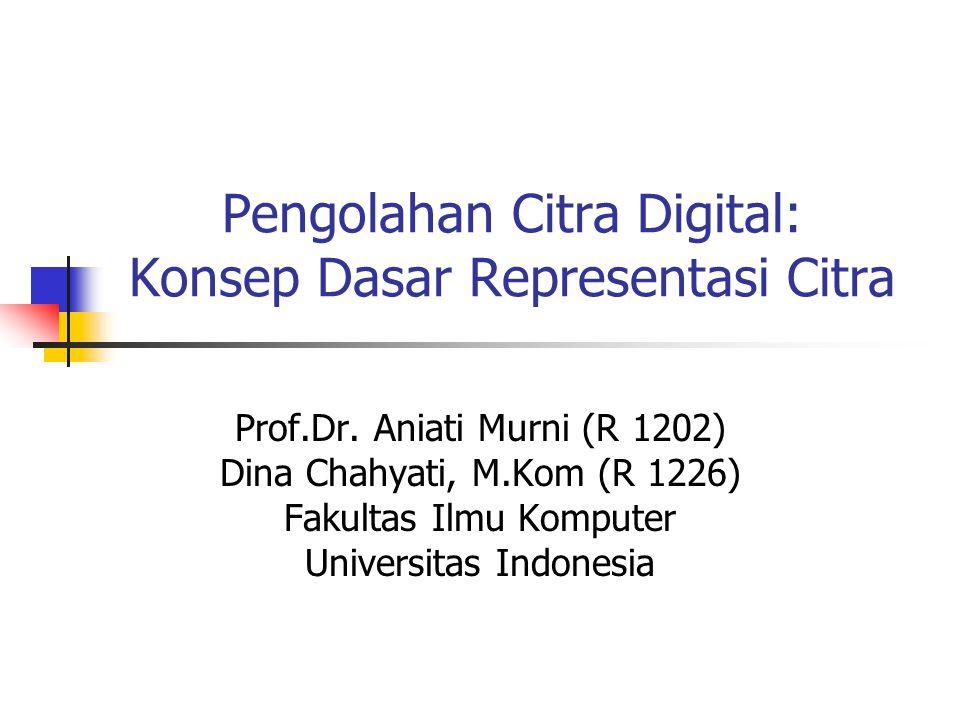 Pengolahan Citra Digital: Konsep Dasar Representasi Citra Prof.Dr. Aniati Murni (R 1202) Dina Chahyati, M.Kom (R 1226) Fakultas Ilmu Komputer Universi