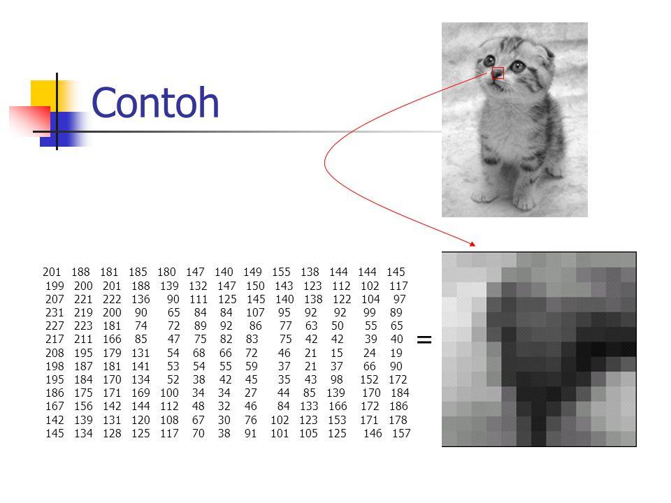 Alur Jika kita menyimpan gambar kucing tadi ke dalam sebuah file (kucing.bmp), maka yang disimpan dalam file tersebut adalah angka- angka yang diperoleh dari matriks kanvas.