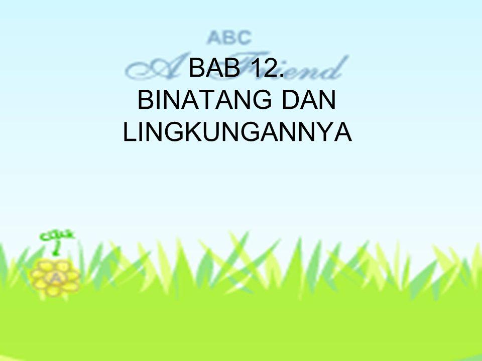 BAB 12. BINATANG DAN LINGKUNGANNYA