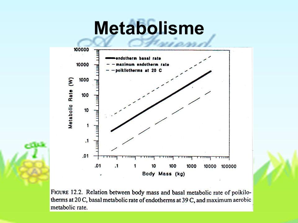 Aplikasi Persamaan Persediaan Energi Laju metabolisme, kehilangan kalor laten, suhu tubuh, dan konduktivitas tubuh terutama fisiologis, dan mempunyai lebih atas dan lebih batas bawah dalam menerangkan fisiologis tentang binatang.