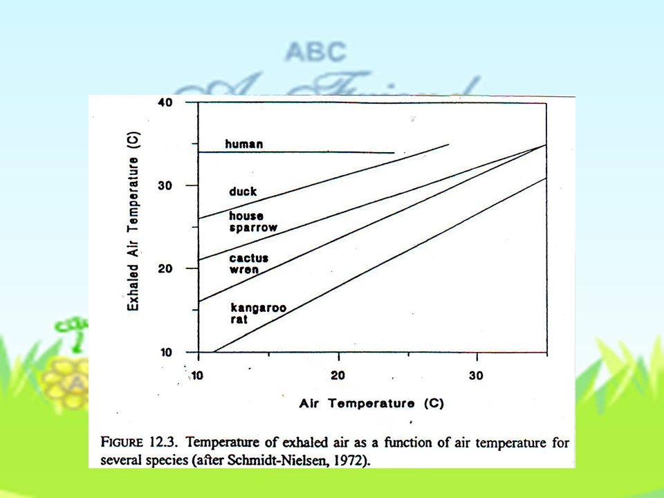 TABLE 12.1 Konduktansi Kulit ke uap air untuk not-heat pada binatang