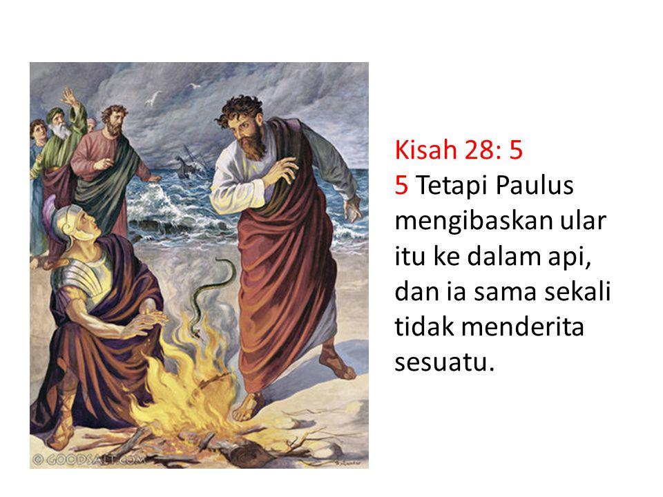 Kisah 28: 5 5 Tetapi Paulus mengibaskan ular itu ke dalam api, dan ia sama sekali tidak menderita sesuatu.