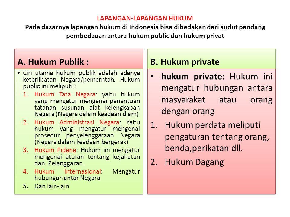 LAPANGAN-LAPANGAN HUKUM Pada dasarnya lapangan hukum di Indonesia bisa dibedakan dari sudut pandang pembedaaan antara hukum public dan hukum privat A.