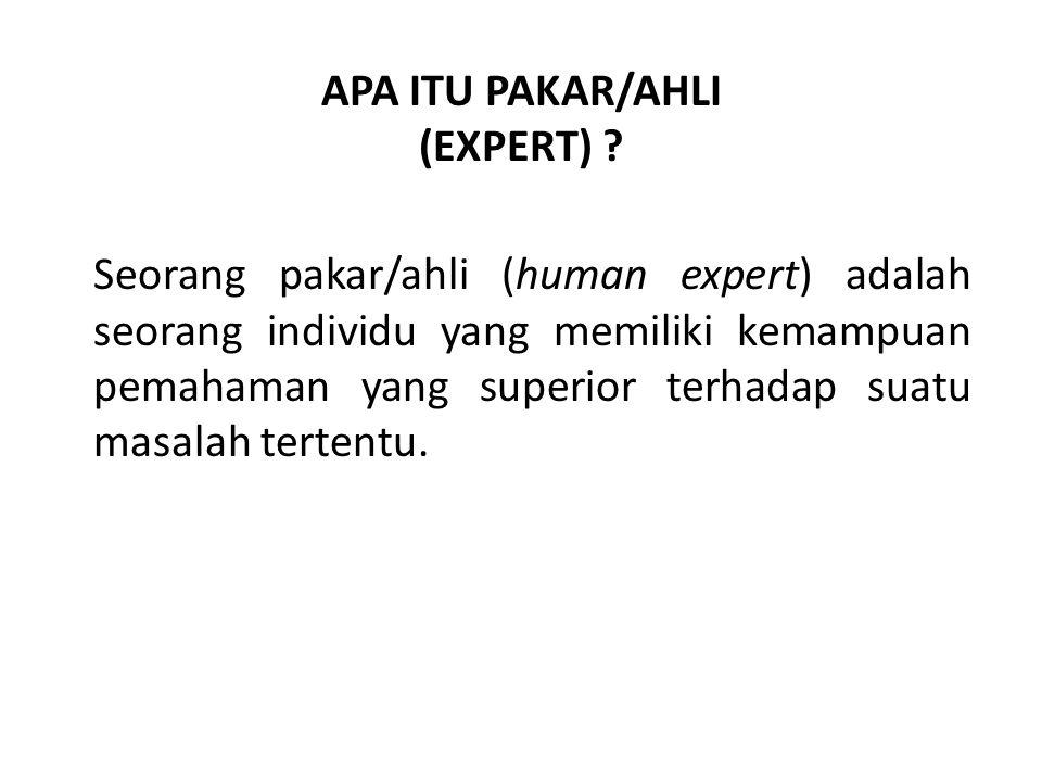 APA ITU PAKAR/AHLI (EXPERT) .
