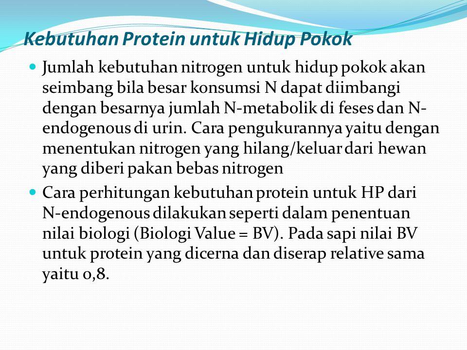 Kebutuhan Protein untuk Hidup Pokok Jumlah kebutuhan nitrogen untuk hidup pokok akan seimbang bila besar konsumsi N dapat diimbangi dengan besarnya jumlah N-metabolik di feses dan N- endogenous di urin.