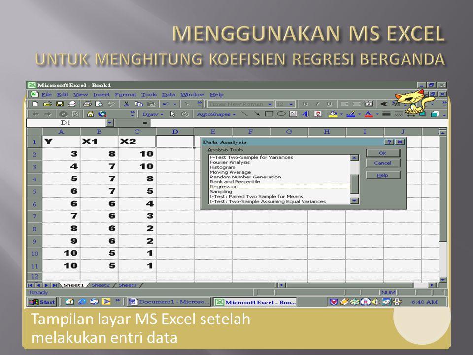 Tampilan layar MS Excel setelah melakukan entri data