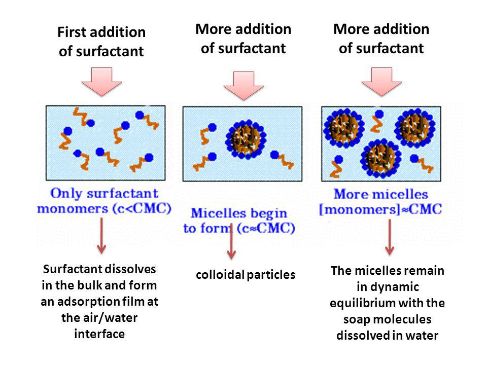 First addition of surfactant More addition of surfactant Surfactant dissolves in the bulk and form an adsorption film at the air/water interface colloidal particles The micelles remain in dynamic equilibrium with the soap molecules dissolved in water