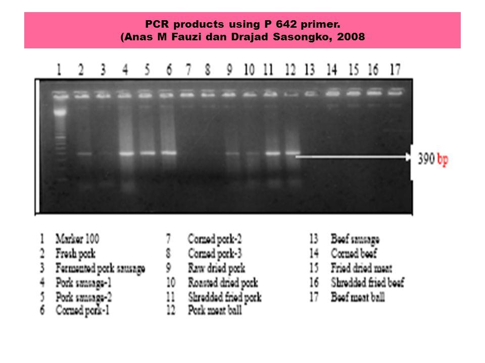 PCR products using P 642 primer. (Anas M Fauzi dan Drajad Sasongko, 2008