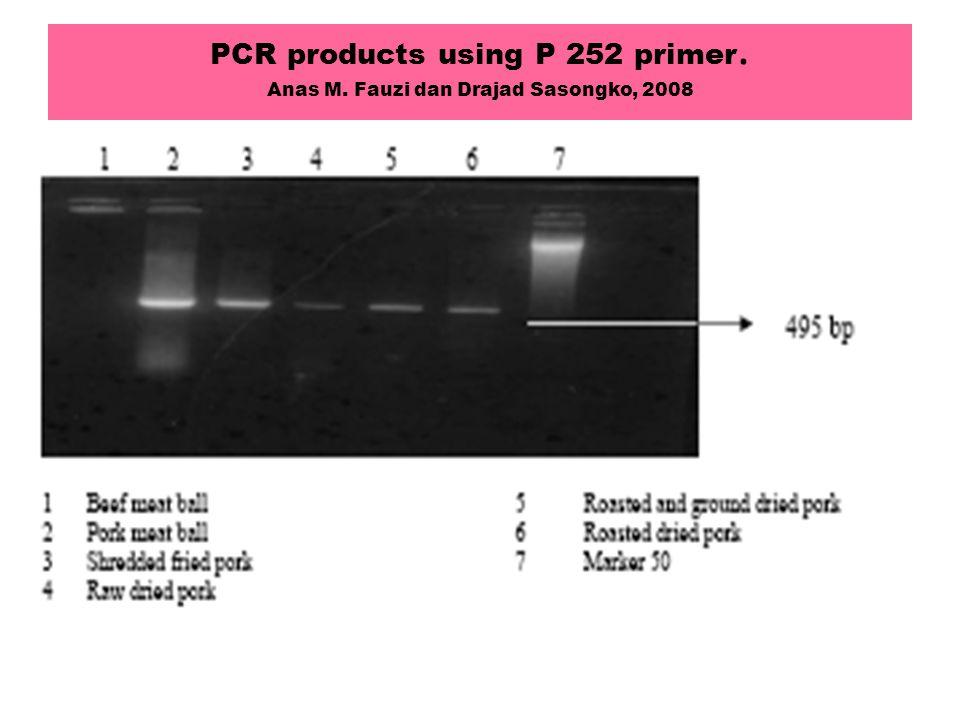 PCR products using P 252 primer. Anas M. Fauzi dan Drajad Sasongko, 2008