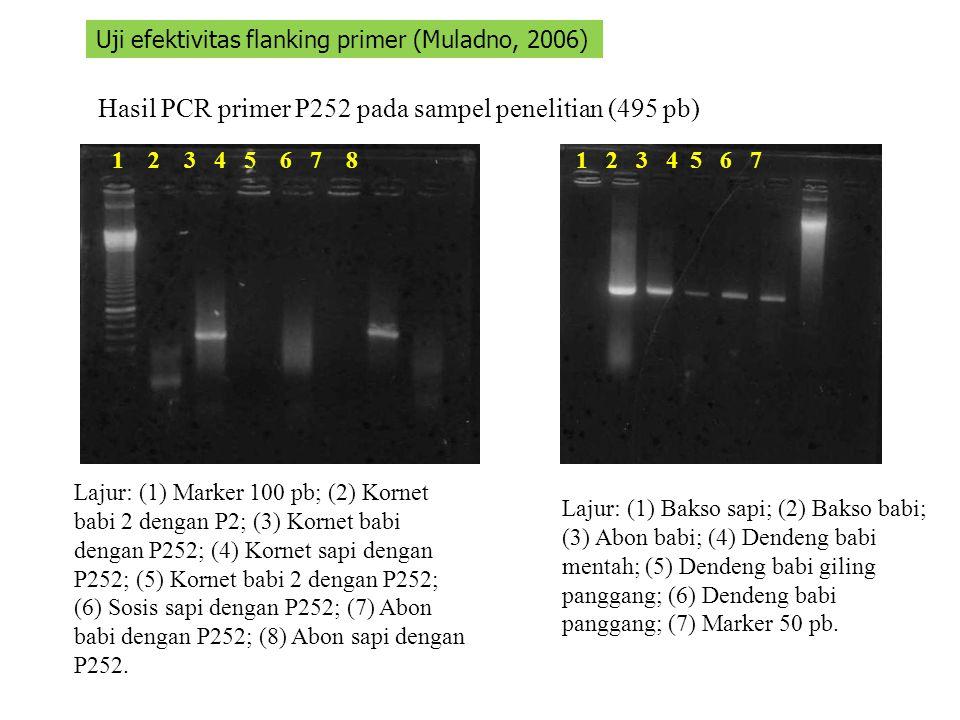 Hasil PCR primer P252 pada sampel penelitian (495 pb) 1 2 3 4 5 6 7 81 2 3 4 5 6 7 Uji efektivitas flanking primer (Muladno, 2006) Lajur: (1) Marker 1