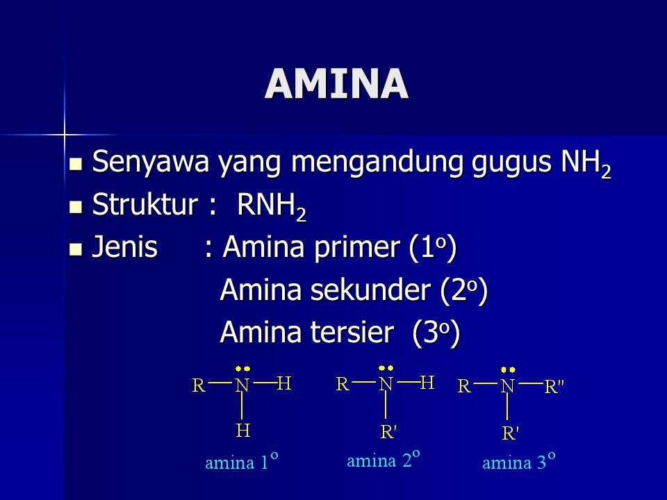AMINA Senyawa yang mengandung gugus NH 2 Senyawa yang mengandung gugus NH 2 Struktur : RNH 2 Struktur : RNH 2 Jenis : Amina primer (1 o ) Jenis : Amin